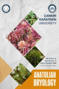 Anatolian Bryology