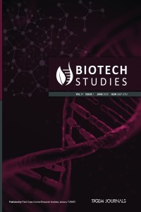 Biotech Studies